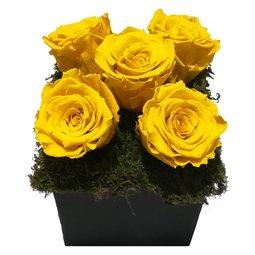 Aranjament 5 trandafiri nemuritori galbeni