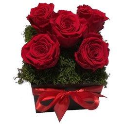Aranjament 5 trandafiri nemuritori rosii