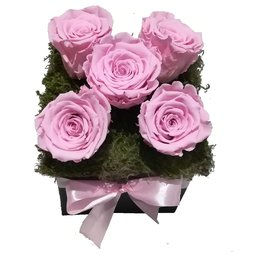 Aranjament 5 trandafiri nemuritori roz