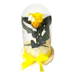 Dragoste si trandafiri nemuritori - galben
