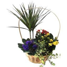 Cos de flori mixt