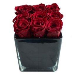 Cub trandafiri conservati