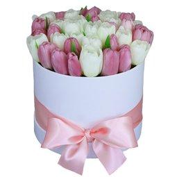 Cutie cu lalele albe si roz