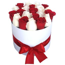 Cutie cu trandafiri rosii si albi