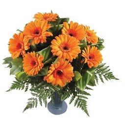 Orange (9)