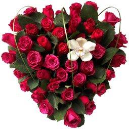 Inima de trandafiri roz