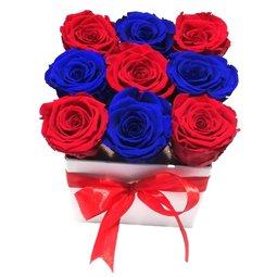 Simetrie in culori - albastru & rosu