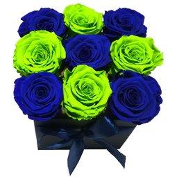 Simetrie in culori - albastru & verde