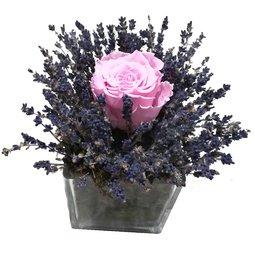 Trandafir nemuritor roz