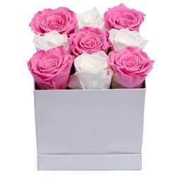 Trandafiri conservati roz si albi