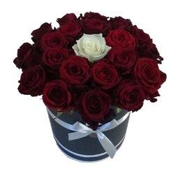 Trandafiri grena
