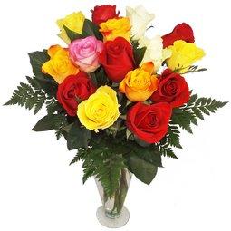 Trandafiri multicolorati