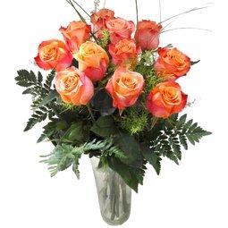 11 trandafiri portocalii