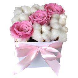 Trandafiri stabilizati roz si flori de bumbac