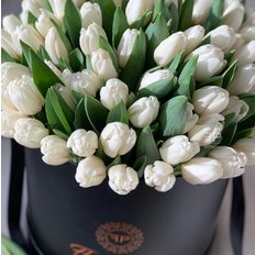 100 White Tulips FlorPassion Box