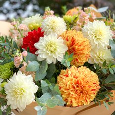 Amazing Dahlia Bouquet
