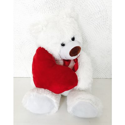 Amour Teddy