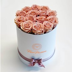 Rose Antico Stabilizzate | FlorPassion Milano | Million Roses