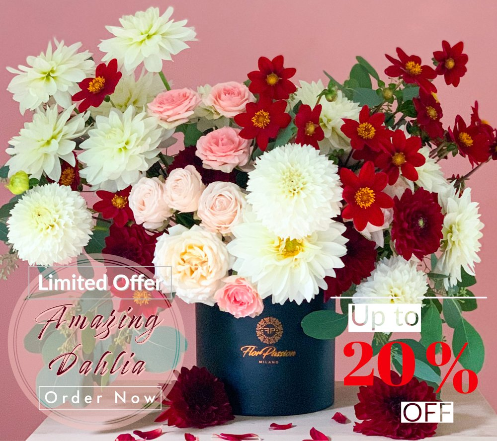 Amazing Dahlia Same Day Flower Delivery to Milan M