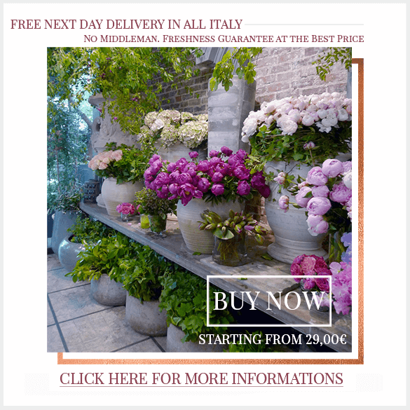 Free Next Day Flowers Delivery across Italy with F