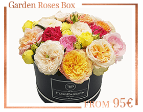Garden Roses FlorPassion Flowers Box