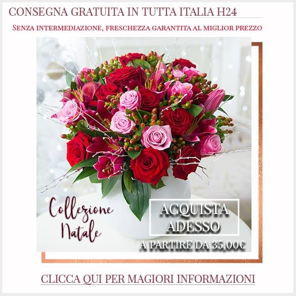 Colezzione Natale Consegna Gratuita Tutta Italia