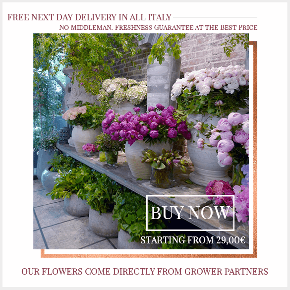 Free Flowers Delivery to Italy
