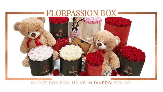 FlorPassion Box Rose Stabilizzate Nuova Collezione