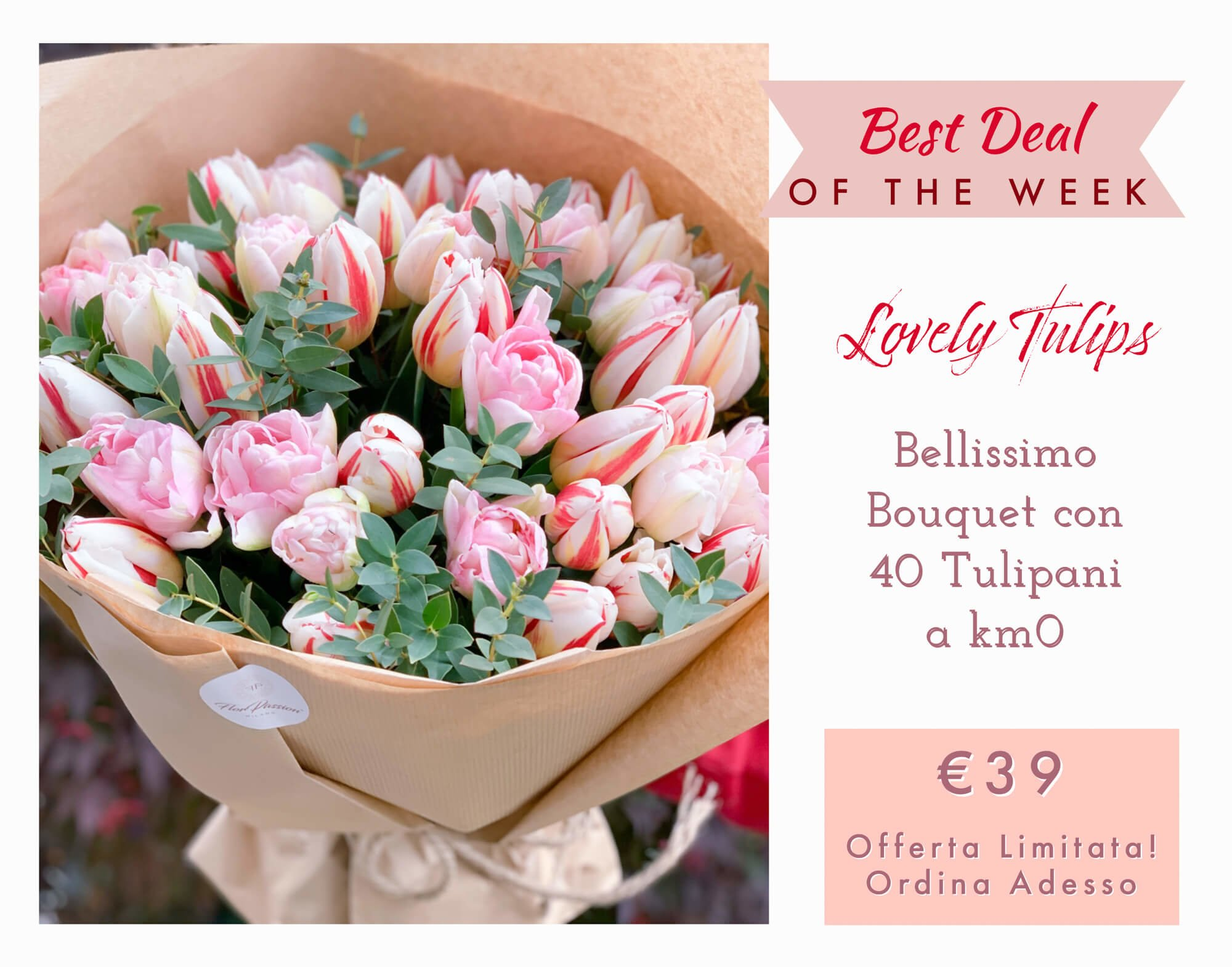 Lovely Tulips Consegna Fiori Milano