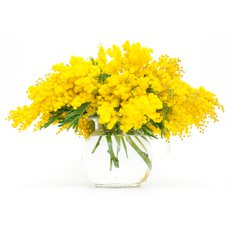 Mimosa Bouquet | Women's Day | Milan Local Florist