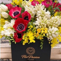 Claire FlorPassion Box