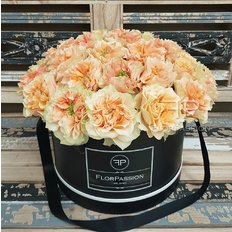 English Garden Box | Exclusive Roses from Vip Roses | FlorPassion