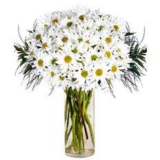 Bouquet Margherite | Fiori Online Milano | FlorPassion