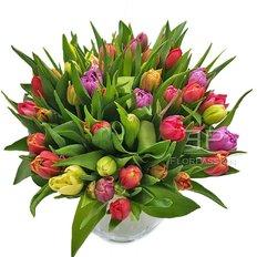 Bouquet Tulipani Misti | Fiorista Milano | Consegna Tulipani