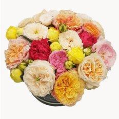 Garden Roses Box