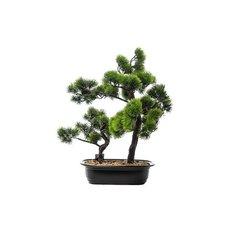 Green Bonsai, 50CM