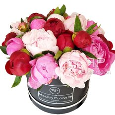 Peonies Million Flowers Box | FlorPassion Milan