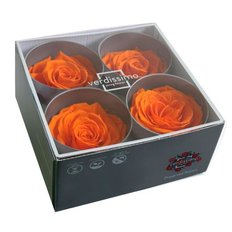 Orange Preserved Premium Roses, 4pcs
