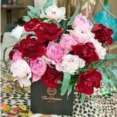 Peonia Bloom Box