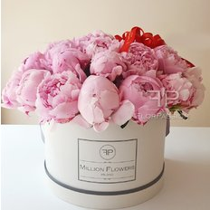 Pink Peonies Delivery Milan | Million Flowers Box with Peonies