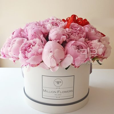 Pink peonies delivery milan million flowers box with peonies pink peonies million box mightylinksfo Gallery