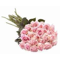 Pink Roses | Send Flowers to Milan | FlorPassion Florist