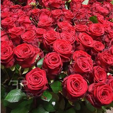 Invia Rose Rosse Red Naomi | Fiorista locale Milano