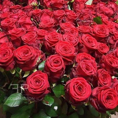 Rose Rosse Red Naomi