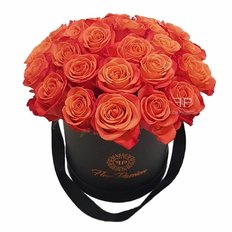 Scatola di Rose Brandy | Million Roses Box | FlorPassion Milano