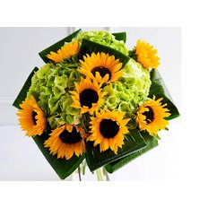 Sunflower Bouquet | Milan Florist | Flowers Online