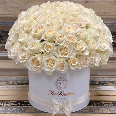 White Roses Dome Box