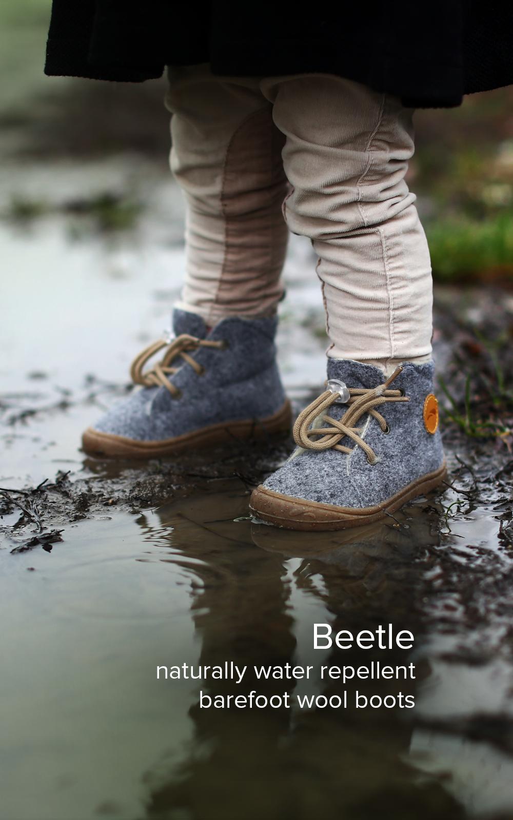 Beetle eng Tel